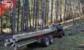 forwarder wood