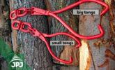 small and big timber tongs